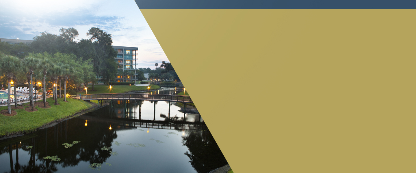 Sawgrass Marriott background