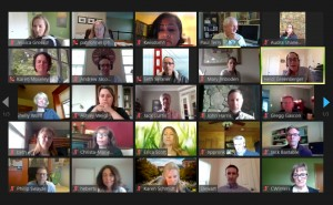 screenshot of a HERO virtual meeting